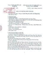 Báo cáo thường niên năm 2012 - Công ty Cổ phần Bóng đèn Phích nước Rạng Đông