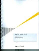 Báo cáo tài chính năm 2011 (đã kiểm toán) - Công ty cổ phần Sợi Thế Kỷ