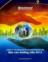 Báo cáo thường niên năm 2013 - Công ty Cổ phần Địa ốc Sài Gòn Thương Tín