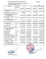 Báo cáo KQKD hợp nhất quý 4 năm 2010 - Công ty Cổ phần Quốc Cường Gia Lai