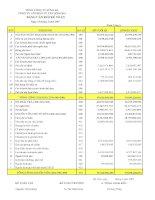 Báo cáo tài chính quý 1 năm 2007 - Công ty Cổ phần Tư vấn Sông Đà