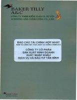 Báo cáo tài chính hợp nhất năm 2012 (đã kiểm toán) - Công ty cổ phần Sản xuất Kinh doanh Xuất nhập khẩu Dịch vụ và Đầu tư Tân Bình
