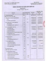 Báo cáo tài chính quý 2 năm 2012 - Công ty Cổ phần Nhiên liệu Sài Gòn