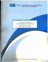 Báo cáo tài chính quý 2 năm 2013 (đã soát xét) - Công ty Cổ phần Đầu tư Điện Tây Nguyên