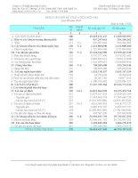 Báo cáo tài chính quý 3 năm 2010 - Công ty Cổ phần Tập đoàn Sara