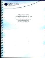 Báo cáo tài chính quý 2 năm 2014 (đã soát xét) - Công ty cổ phần Chứng khoán Hoàng Gia