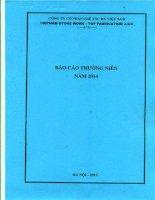 Báo cáo thường niên năm 2014 - Công ty cổ phần Chế tác Đá Việt Nam