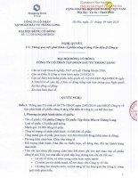 Nghị quyết Đại hội cổ đông bất thường - Công ty Cổ phần Tập đoàn Đầu tư Thăng Long