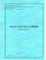 Báo cáo tài chính quý 2 năm 2011 - Công ty Cổ phần Sadico Cần Thơ