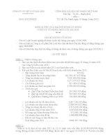 Nghị quyết Đại hội cổ đông thường niên năm 2012 - Công ty Cổ phần Dệt lưới Sài Gòn