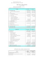 Báo cáo tài chính quý 3 năm 2009 - Công ty Cổ phần In Sách giáo khoa tại Tp.Hồ Chí Minh