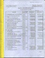 Báo cáo tài chính quý 2 năm 2010 - Công ty Cổ phần Xi măng Sài Sơn