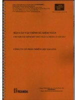 Báo cáo tài chính năm 2012 (đã kiểm toán) - Công ty Cổ phần Nhiên liệu Sài Gòn