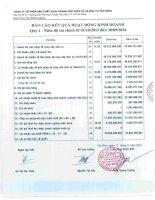Báo cáo tài chính công ty mẹ quý 1 năm 2014 - Công ty cổ phần Sản xuất Kinh doanh Xuất nhập khẩu Dịch vụ và Đầu tư Tân Bình