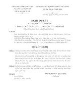 Nghị quyết đại hội cổ đông ngày 26-10-2010 - Công ty Cổ phần Đầu tư và Xây lắp Sông Đà