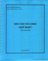 Báo cáo tài chính hợp nhất quý 2 năm 2010 - Công ty Cổ phần Kỹ Nghệ Lạnh