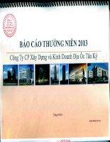 Báo cáo thường niên năm 2013 - Công  ty Cổ phần Xây dựng và Kinh doanh Địa ốc Tân Kỷ