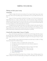 Báo cáo thường niên năm 2013 - Công ty Cổ phần Dệt lưới Sài Gòn