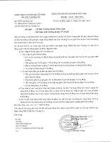 Báo cáo tài chính công ty mẹ quý 4 năm 2014 - Ngân hàng Thương mại Cổ phần Sài Gòn Thương Tín