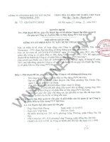 Nghị quyết Hội đồng Quản trị ngày 08-03-2011 - Công ty Cổ phần Đầu tư Xây dựng Vinaconex - PVC
