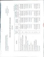 Báo cáo tài chính công ty mẹ quý 4 năm 2012 - Công ty cổ phần Vận chuyển Sài Gòn Tourist