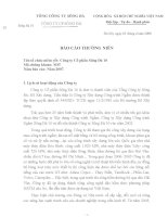 Báo cáo thường niên năm 2007 - Công ty Cổ phần Sông Đà 10