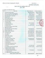 Báo cáo tài chính quý 4 năm 2009 - Công  ty Cổ phần Xây dựng và Kinh doanh Địa ốc Tân Kỷ