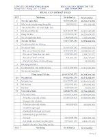 Báo cáo tài chính quý 4 năm 2008 - Công ty Cổ phần Sông Đà 6.06