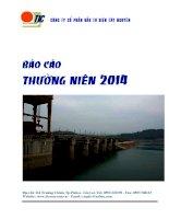 Báo cáo thường niên năm 2014 - Công ty Cổ phần Đầu tư Điện Tây Nguyên