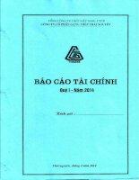 Báo cáo tài chính công ty mẹ quý 1 năm 2014 - Công ty cổ phần Gang thép Thái Nguyên