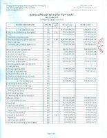 Báo cáo tài chính hợp nhất quý 3 năm 2010 - Công ty Cổ phần Chứng khoán Ngân hàng Sài Gòn Thương Tín