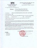 Báo cáo tài chính quý 4 năm 2014 - Công ty Cổ phần Khoáng sản Sài Gòn - Quy Nhơn
