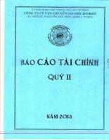 Báo cáo tài chính công ty mẹ quý 2 năm 2013 - Công ty cổ phần Vận chuyển Sài Gòn Tourist