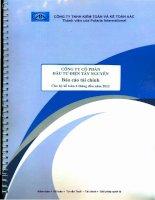 Báo cáo tài chính quý 2 năm 2012 (đã soát xét) - Công ty Cổ phần Đầu tư Điện Tây Nguyên