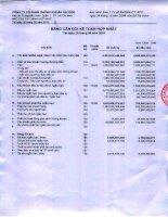 Báo cáo tài chính hợp nhất quý 3 năm 2010 - Công ty cổ phần Chứng khoán Sài Gòn