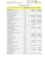 Báo cáo tài chính hợp nhất quý 1 năm 2013 - Công ty Cổ phần Tư vấn Sông Đà
