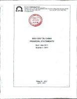 Báo cáo tài chính quý 1 năm 2011 - Công ty Cổ phần S.P.M