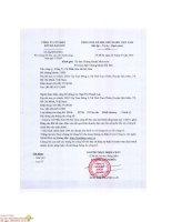 Báo cáo tài chính công ty mẹ quý 1 năm 2016 - Công ty Cổ phần Sơn Hà Sài Gòn