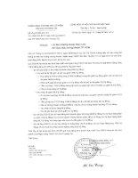 Báo cáo tài chính hợp nhất quý 2 năm 2014 - Ngân hàng Thương mại Cổ phần Sài Gòn Thương Tín