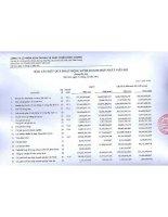 Báo cáo KQKD hợp nhất quý 4 năm 2011 - Công ty Cổ phần Kinh doanh và Phát triển Bình Dương