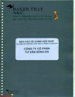 Báo cáo tài chính hợp nhất năm 2014 (đã kiểm toán) - Công ty Cổ phần Tư vấn Sông Đà