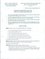 Nghị quyết Hội đồng Quản trị ngày 07-03-2011 - Công ty Cổ phần Sơn Đồng Nai