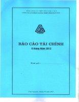 Báo cáo tài chính công ty mẹ quý 3 năm 2013 - Công ty cổ phần Gang thép Thái Nguyên