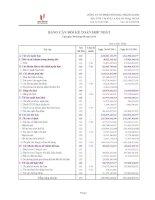 Báo cáo tài chính hợp nhất quý 3 năm 2011 - Công ty cổ phần Sông Đà - Thăng Long