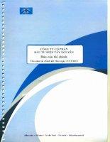 Báo cáo tài chính năm 2010 (đã kiểm toán) - Công ty Cổ phần Đầu tư Điện Tây Nguyên