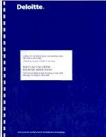 Báo cáo tài chính năm 2009 (đã kiểm toán) - Công ty Cổ phần Xây lắp Đường ống Bể chứa Dầu khí