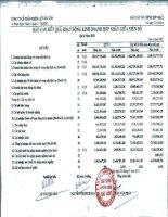 Báo cáo KQKD hợp nhất quý 4 năm 2010 - Công ty Cổ phần Nhiên liệu Sài Gòn