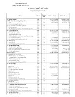 Báo cáo tài chính quý 3 năm 2010 - Công ty Cổ phần Sông Đà 9.01