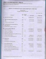 Báo cáo tài chính quý 3 năm 2013 - Công ty cổ phần Thanh Hoa - Sông Đà