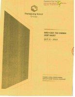 Báo cáo tài chính hợp nhất quý 2 năm 2013 - Công ty Cổ phần Tập đoàn Đầu tư Thăng Long
